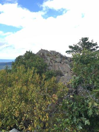 Bearfence Mountain: photo0.jpg
