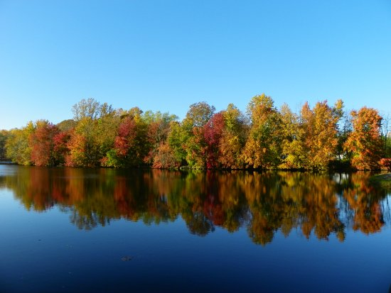 Delaware: Fall at Lums Pond State Park