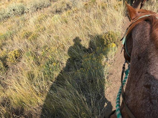 7D Ranch: photo7.jpg