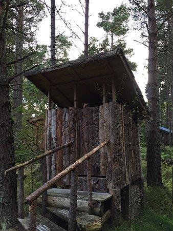 Nethy Bridge, UK: Lazy Duck Hostel, Eco Cabins & Lightweight Camping Ground