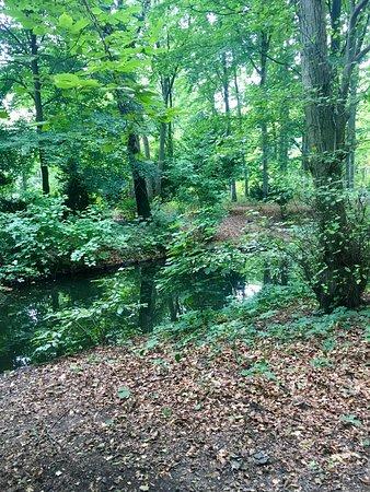 Tiergarten: photo7.jpg