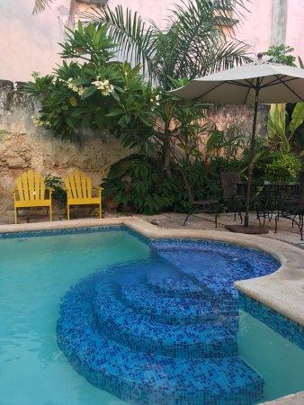 Luz En Yucatan: Beautiful original details and a beautiful stay.