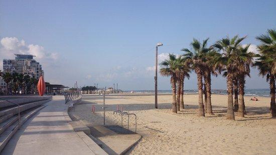 Mercure Tel-Aviv City Center: ホテルから数分あるいた先のビーチ