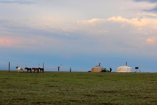 Dalandzadgad, منغوليا: Nomad Family