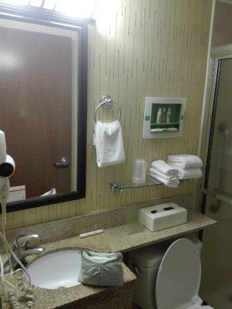 Holiday Inn NYC - Manhattan 6th Avenue - Chelsea: cuarto de baño