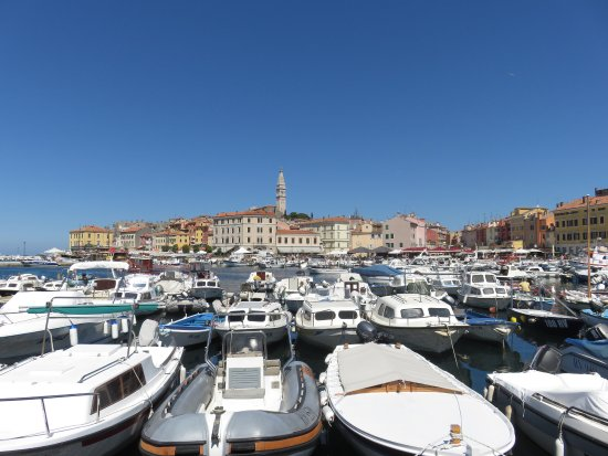 View across the marina to old town Rovinj