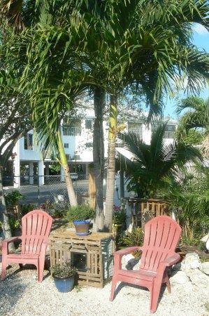 Conch on Inn Motel Photo