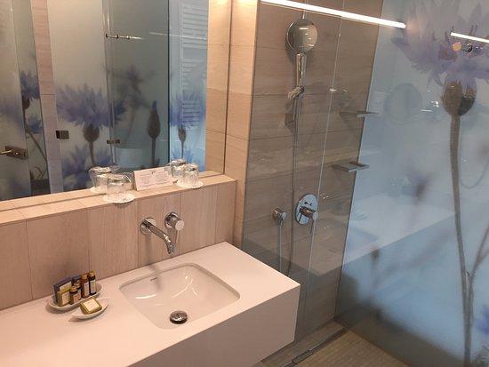Bellissimo bagno con doccia fiorita a vetro che lo separa da bagno
