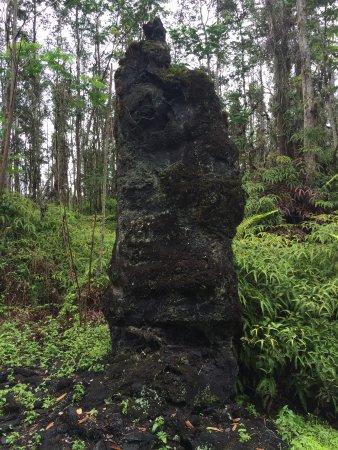 Lava Tree State Park : Lava tree