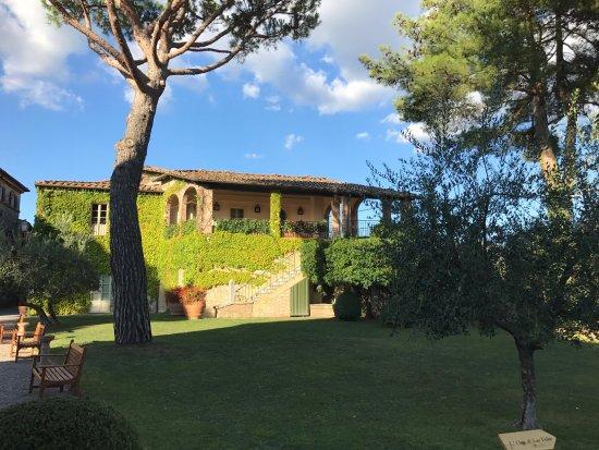 Castelnuovo Berardenga Picture
