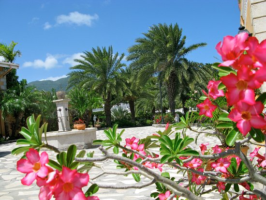 Basseterre, Saint Kitts: Palms Court Gardens entrance area