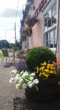 Manningtree, UK: Flowers in 2016