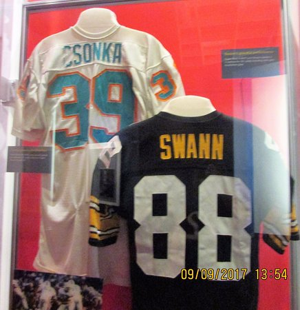 reputable site 605ed 8ea38 The jerseys of Larry Csonka and Lynn Swann - Picture of Pro ...