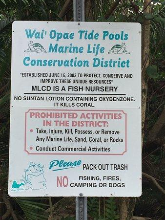Pahoa, HI: Information on how to use Wai'opae Tide Pools