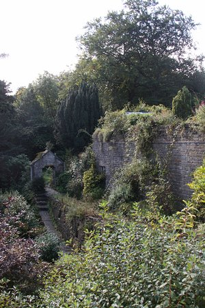 Old Stoney Bank Guest House: garden is overgrown but spectacular