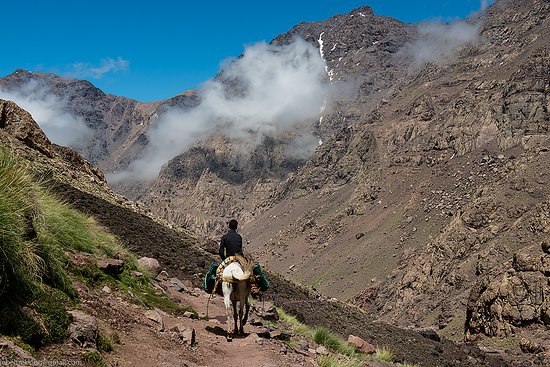 Jebel Trekking
