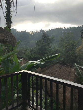 Nandini Bali Jungle Resort & Spa: photo1.jpg