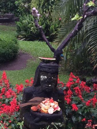 Boquete Garden Inn: photo1.jpg