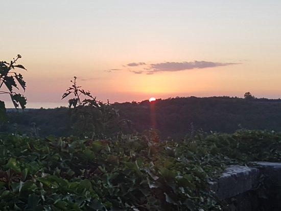 Groznjan, Croatia: 20170913_191809_large.jpg