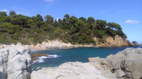 Evenia Olympic Park: plaża Cala Boadella