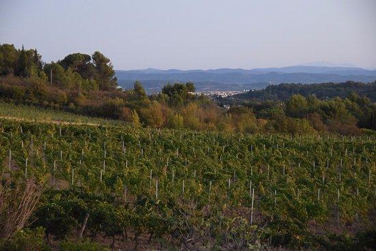 Villegailhenc Photo