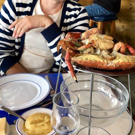 Restaurant le vivier dans fouesnant avec cuisine fruits de for Vivier a poisson