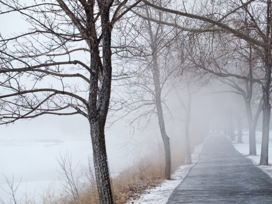 Calgary Pathway System : Pathway in winter