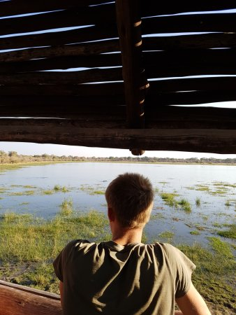 Khwai North Gate Campsite: Hippo Pool