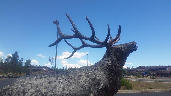 Tusayan, AZ: Statua di un cervo fuori dal centro