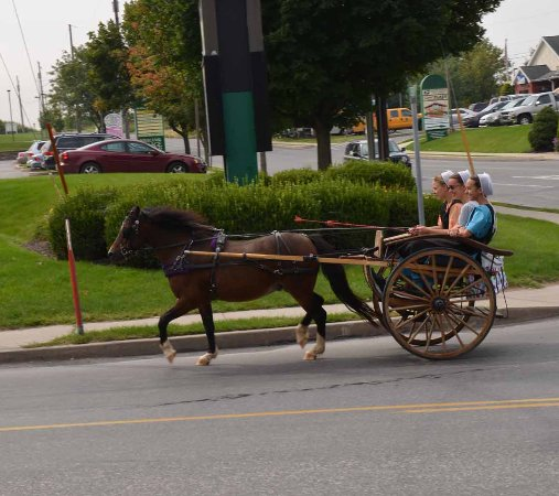 Hershey Farm Inn : So much to see and do in the area.