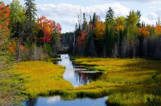 Haliburton, Kanada: Fall color at Minden Wild Water Preserve