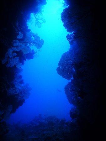 Poindimie, Nya Kaledonien: faille et gorgones