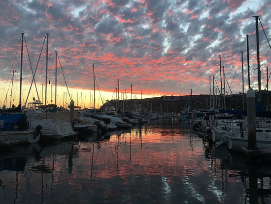 DANA POINT HARBOR, CA, 😍The Endless Summer 🌅's!