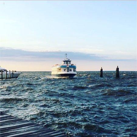 Saiville Ferry Service