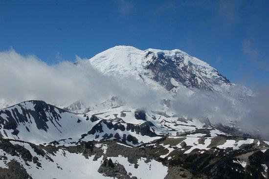Mount Rainier: Mt. Rainier - viewed from the Fremont Lookout Trail (above Sunrise)