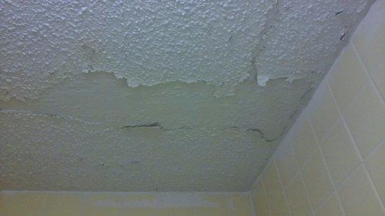 Aiken, ساوث كارولينا: photo of bathroom ceiling