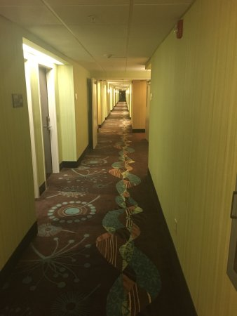 Hampton Inn Front Royal: photo0.jpg