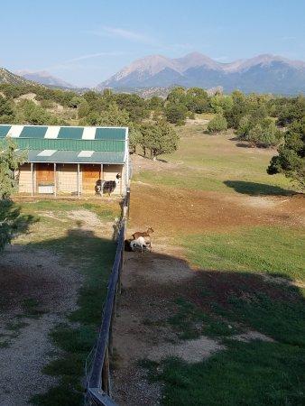 Mountain Goat Lodge: 20170909_083438_large.jpg