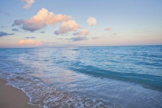 Four Points by Sheraton Miami Beach: Morning Beach and Ocean