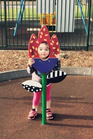 Thorndon Park : Lots to play with