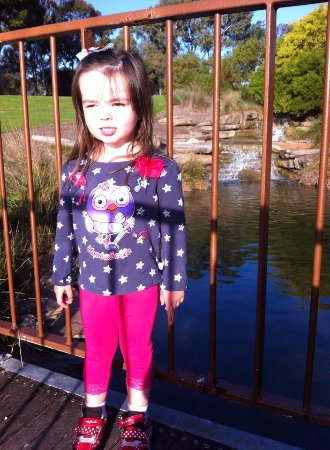 Thorndon Park : on the bridge over the lake