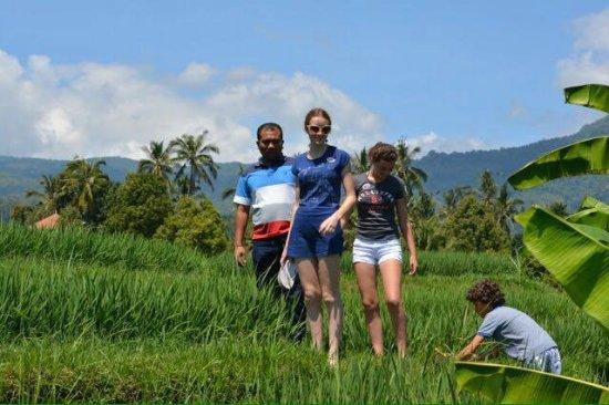 Pantai Lovina, Indonesia: trekking at rice field