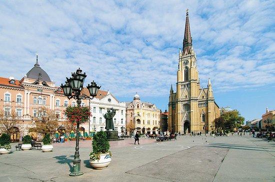 Visita privata di Novi Sad e Sremski