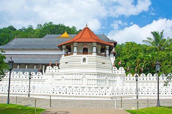 Discover Kandy -Spice Garden visit...