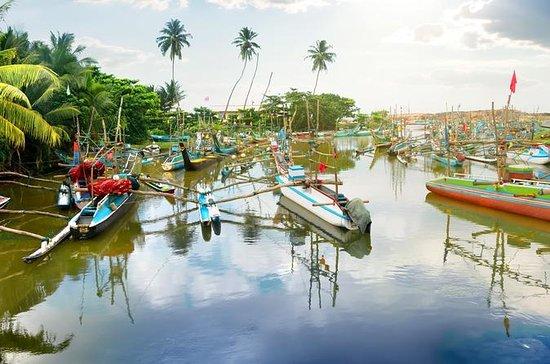 Explore Negombo - Muthurajawela...