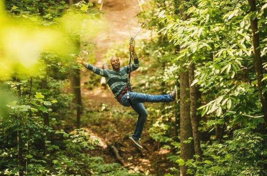 Zip Line and Treetop Adventure