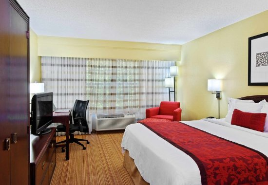Athens, GA: King Guest Room