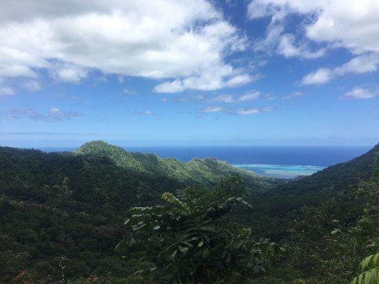 Belvedere Lookout Photo