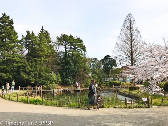 Nakano, Japón: A view of the Park