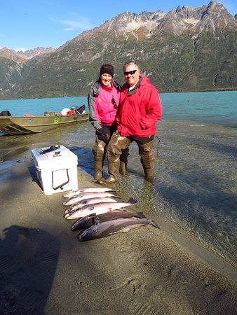 Nikiski, AK: Our catch for the day - 6 Silver Salmon